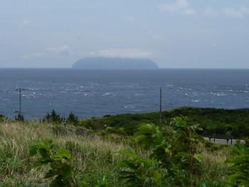 イルカの聖地 御蔵島