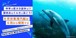 お盆最初の週末、8月9日(金)発東海汽船チケット発売は6月9日(日)です。